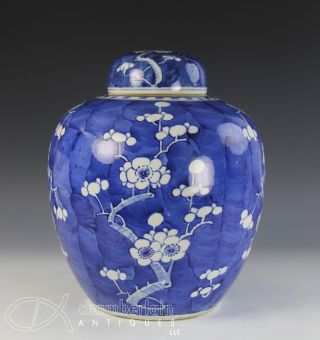 Very Large Antique Chinese Blue White Porcelain Covered Prunus Jar photo