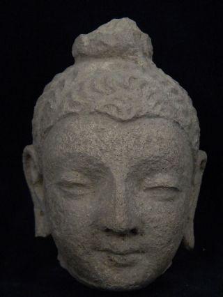 Ancient Stucco Buddha Head Gandhara/gandharan 200 Ad Stc498 photo