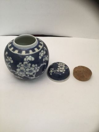Antique Chinese Porcelain Prunus Pattern Ginger Jar - Lid & Cork Stopper photo