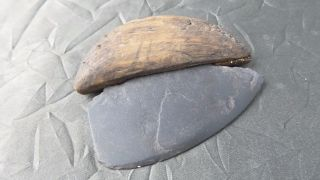 Ancient Inuit Small Ulu With Wooden Haft & Shale Blade - 1300 - 2000 Years Old photo