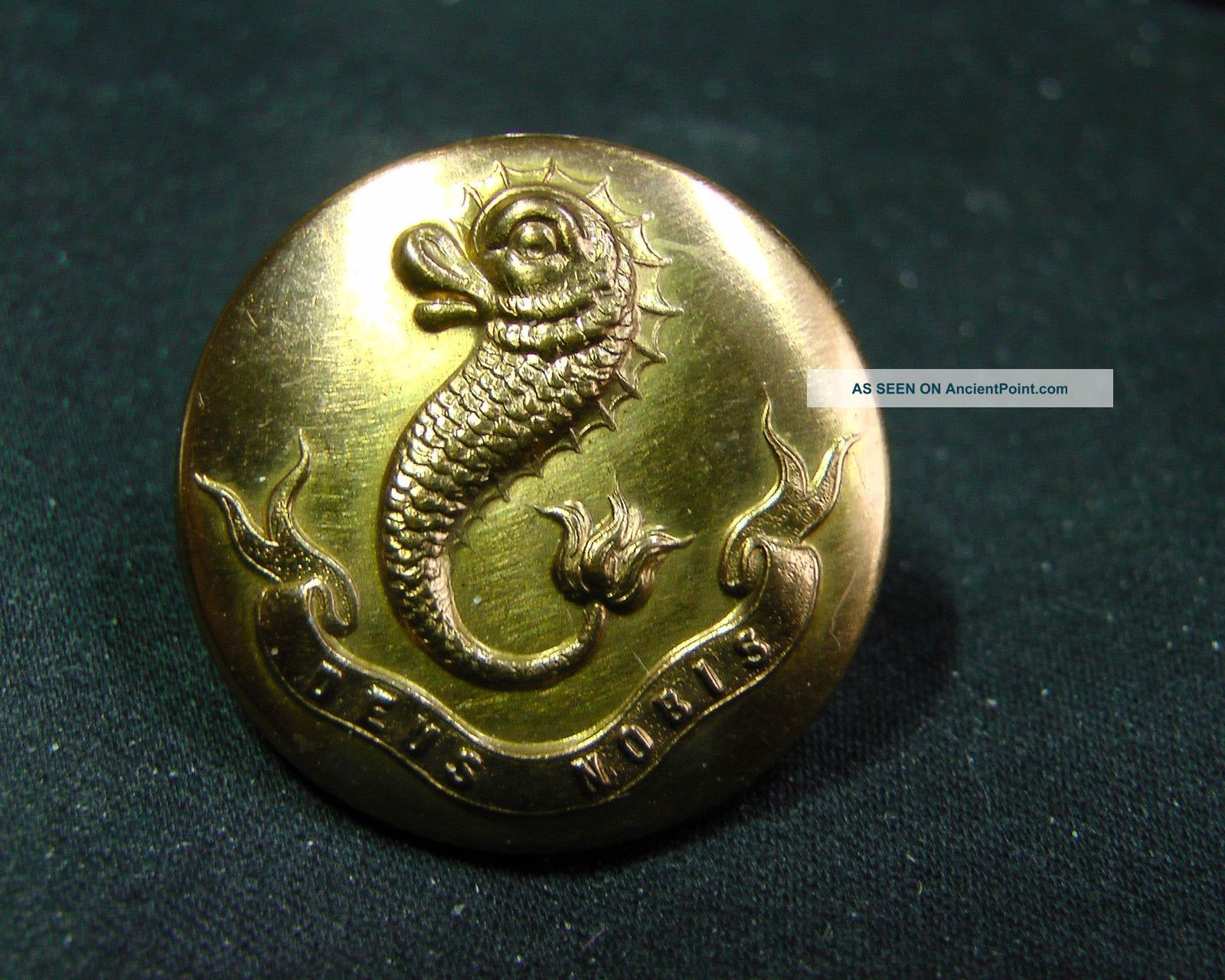 Mystery Button 3 Livery? Dolphin W Motto Bowe & Seligman Ny Circa 1900 Buttons photo