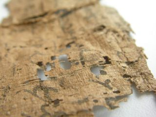 Ancient Rare Old Papyrus Manuscript Fragment photo