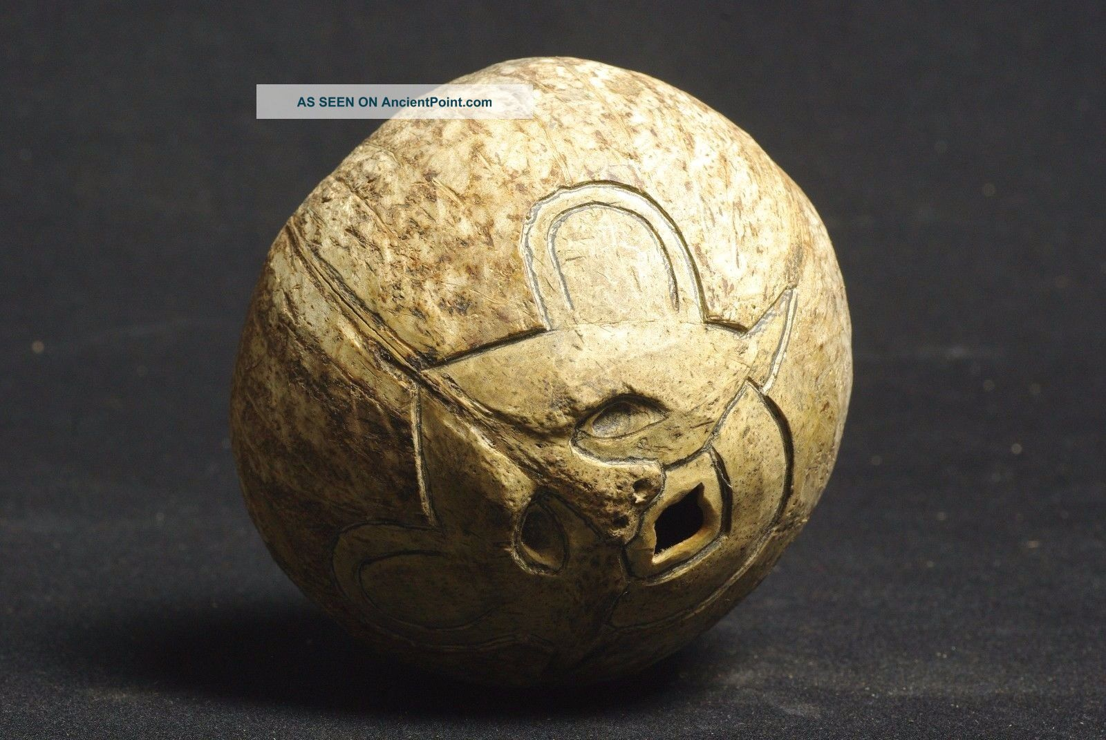 Mask Engraved On Coconut Shell - West Timor - Tribal Artifact - Pacific Islands & Oceania photo