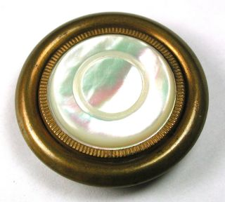Lg Sz Antique Button Carved Iridescent Shell W/ Brass Border - 1 & 7/16