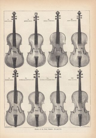Violins Of The Great Masters Famous Violins Antique Music Art Print 1882 photo