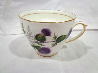 Vintage Duchess Thistle Bone China Tea Cup/england photo