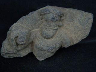 Ancient Stone Bearded Figure Gandhara/gandharan 100 Ad Stn306 photo