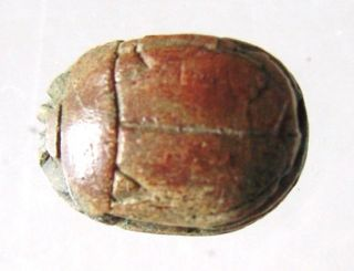 Egyptian Steatite Scarab With Hieroglyphic Of A Scarab.  Ref.  660. photo