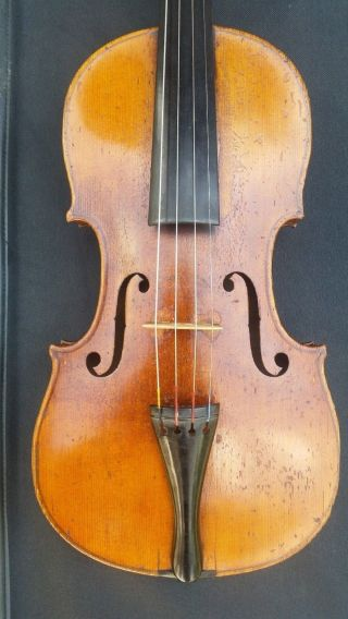 Rare Antique Left - Hand Violin By Seidel With 5 - Ply Purfling photo