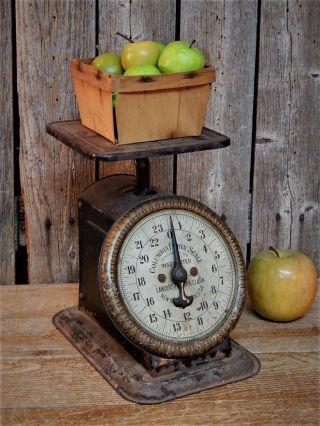 Antique Primitive 1906 Landers Frary & Clark Farmhouse Rustic Scale photo