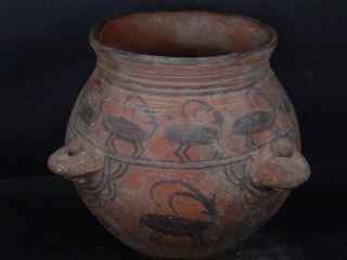 Ancient Large Size Teracota Painted Pot With Animals Indus Valley 2500 Bc Ik502 photo