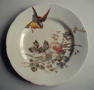 Antique French Polychrome Plate W.  Bird & Flowers - Choisy Le Roi C.  1880 - 1900 photo