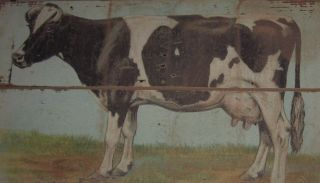 Big Dairy Milking Cow Wall Picture Primitive/french Country Farmhouse Barn Decor photo