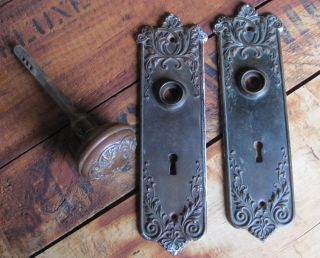 Antique Brass Floral Door Backplates And One Door Knob Matching photo