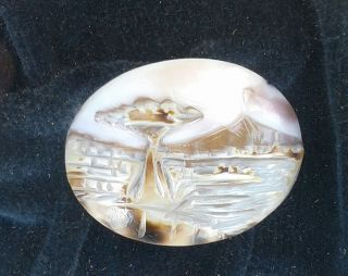 Vtg Torre D Greco Coralli Hand Carved Cameo Italy Shell Coral Mt Vesuvius Framed photo