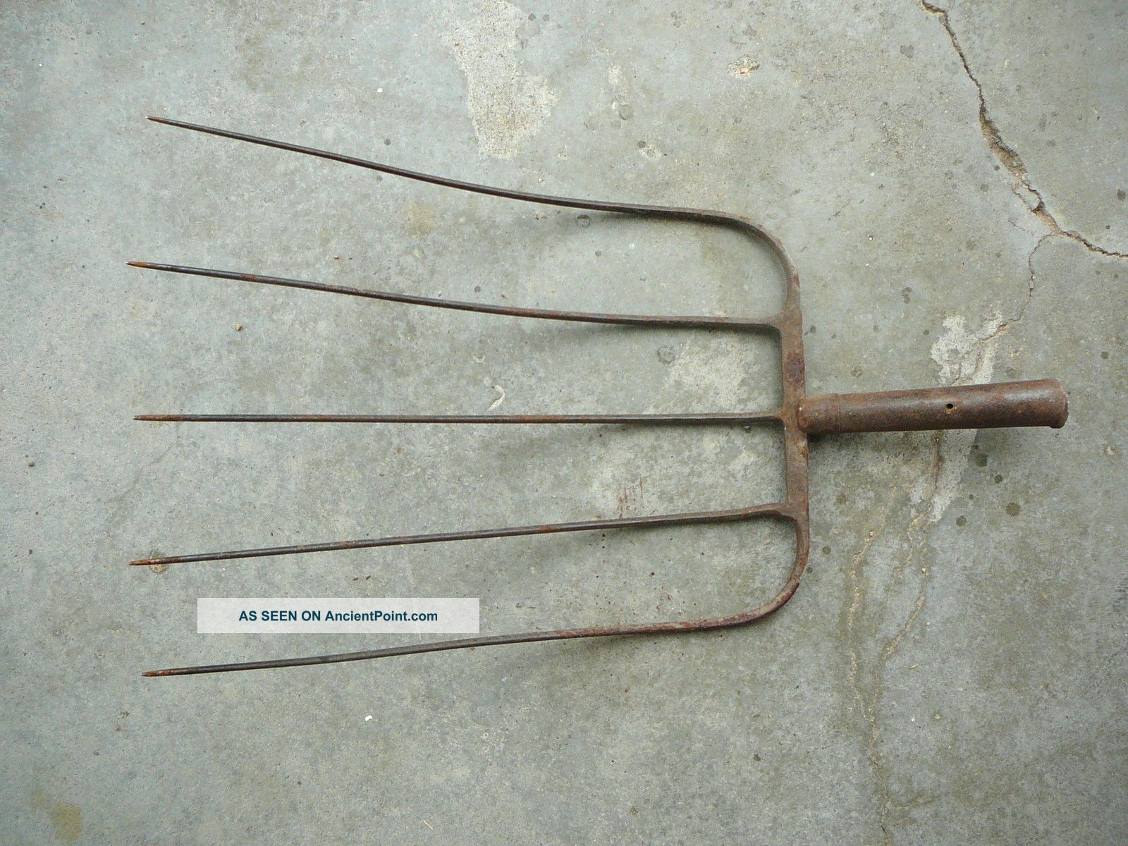 Antique Primitive Farm Ranch Tool - Metal Five Tine Barley Or Pitchfork Head 24