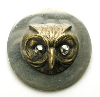 Med Sz Antique Brass On Steel Disc Button Owl Head W/ Cut Steel Eyes - 15/16