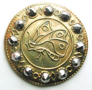 Antique Brass Button Butterfly W/ Cut Steel Border - 15/16