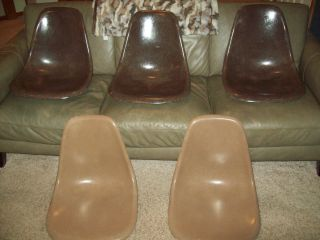 5 Herman Miller Mid Century Fiberglass Eames Brown Mocha Umber Chair Shells photo