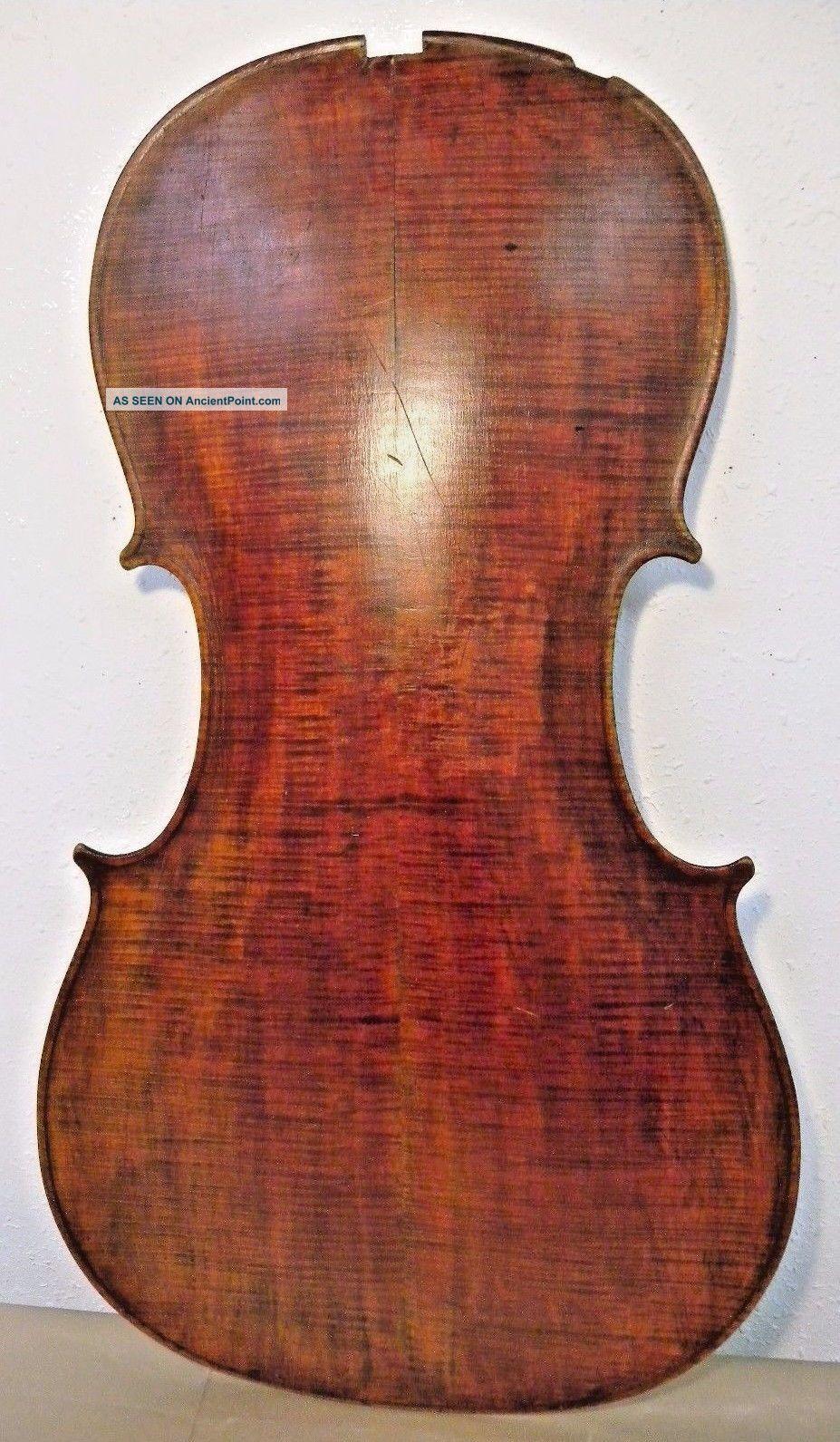 Antique 19c Cello Back Austrian Copy Of Nicolo Amati