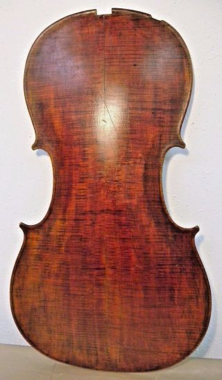 Antique 19c Cello Back Austrian Copy Of Nicolo Amati