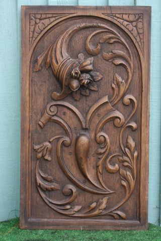 19thc Wooden Oak Panel With Cornucopia Of Fruits,  Flowers & Leaves C1880s photo